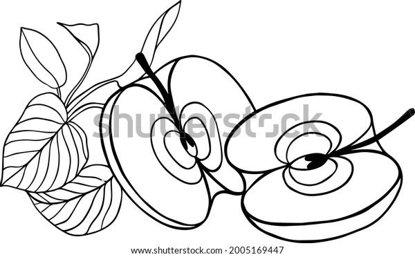 Apples Vector Image Fruit Set