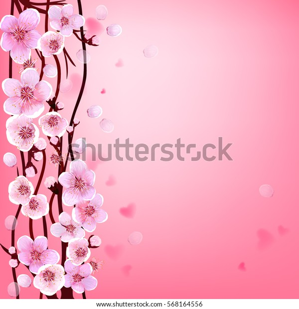 fiori di ciliegio datazione Asia login Singapore hook up sito Web