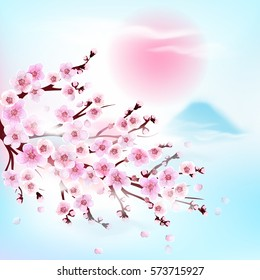 Apricot. Japan Cherry. Vector illustration. Card. Vector illustration. Springtime.