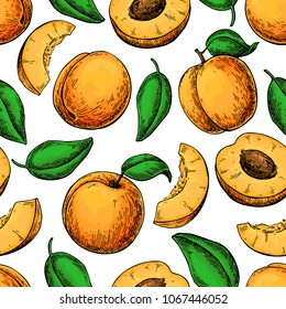 Apricot seamless pattern. Vector drawing . Hand drawn fruit and sliced pieces. Summer food background. Detailed vegetarian sketch. Great for label, fabric, packaging