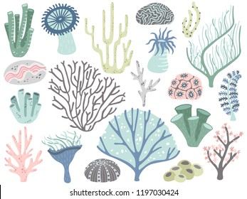 Aquarium corals and seaweed. Marine ocean coral flora, decor underwater seaweeds and different water plants. Algas and corals blossom tropical sea plant elements cartoon vector isolated icons set