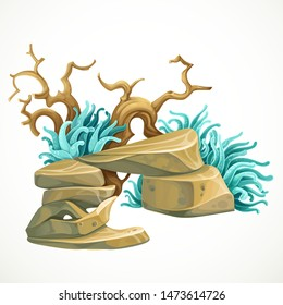 Aquarium decoration stone arch with sea anemones and a piece of wooden driftwood marine object isolated on white background