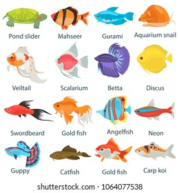 Aquarium fish color flat icons set