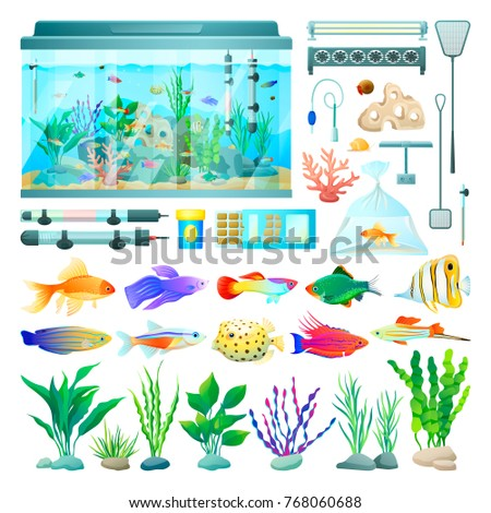 Aquarium Fish Set Icons Various Types Stock Vector Royalty Free