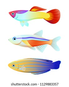 Aquarium fish silhouette isolated on white icons. Freshwater animals guppy and neon tetra, blue striped tamarin wrasse cartoon vector illustration