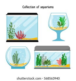 Aquarium forms vector illustration. Decoration home empty glass tanks isolated on white background. Set of transparent aquarium for fish