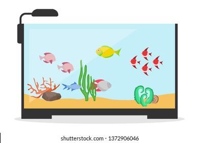 Cartoon Aquarium Images Stock Photos Vectors Shutterstock