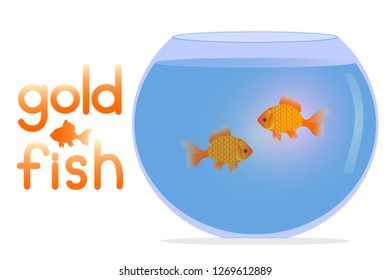 Aquarium with water and two goldfish. Aquarium with the inscription gold fish. Magic goldfish with an aquarium. For pet shops.