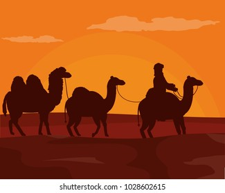 Arab with camels on desert