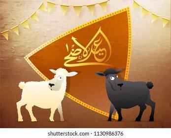 Arabic calligraphic golden text Eid-Ul-Adha, Islamic festival of sacrifice with illustration of sheeps.