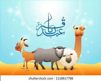 Arabic calligraphy text Eid-Ul-Adha, Islamic festival of sacrifice with illustration of sheep, goat, camel and buffalo on lighting effect background.