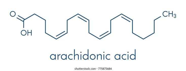Arachidonic acid molecule. Polyunsaturated omega-6 fatty acid that is a precursor of prostaglandins, prostacyclin, thromboxanes, leukotrienes and anandamide. Skeletal formula.