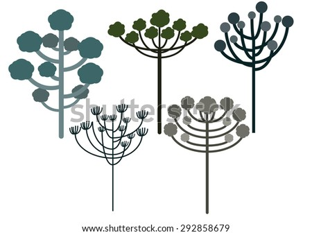 Araucaria tree set vector