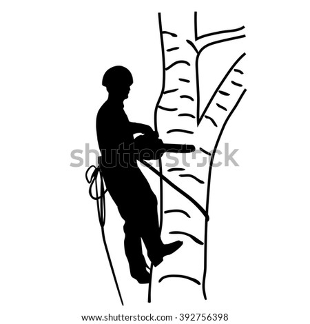 Arborist Saws Birch Chainsaw Height Stock Vector Royalty Free