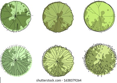 Architecture sketch green trees top view vector