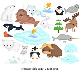 an arctic animal illustration vector set