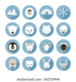 Arctic Animals Flat Icons Set, Winter, Nature Travel and Wildlife