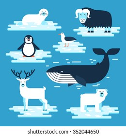 Arctic and Antarctic animals set, vector flat design illustration. Polar animals for infographic. White bear, penguin, musk-ox, blue whale, petrel, seal, reindeer.