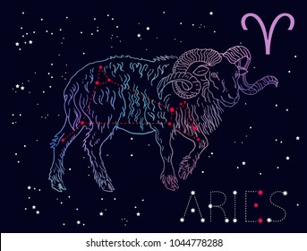 Aries Zodiac sign and constellation. Horned sheep on a cosmic dark blue background with stars. Hand drawn vintage engraving style vector illustration. Space, astrology, horoscope, astronomy design.