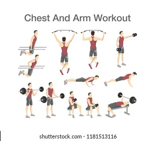 Arm and chest workout for men with dumbbell and barbell. Sport exercise for muscle building. Fitness training. Isolated vector illustration