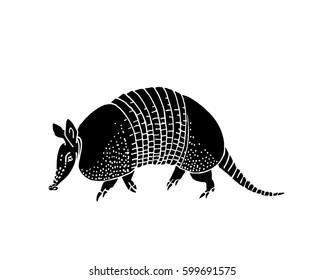 Armadillo hand drawn vector illustration