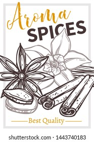 Aroma eco spices vector hand drawn poster template. Orchid flower and vanilla pods outline ink pen illustration. Flavoring cinnamon sticks sketch. Spices, condiments store banner layout