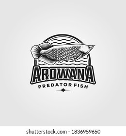 Arowana fish vintage logo vector illustration design