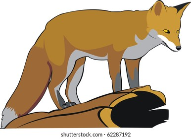 the art illustration of one red fox