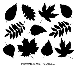art set of black isolated tree leaves and branches silhouettes