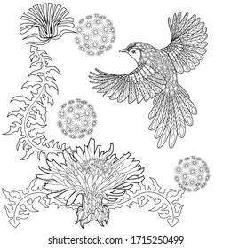 Art therapy coloring page. Coloring Book for adults. Colouring pictures with flowers and bird. Antistress freehand sketch drawing with doodle and zentangle elements.