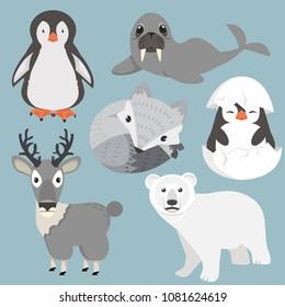Artic animals cartoon collection Set