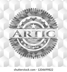 Artic realistic grey emblem with cube white background