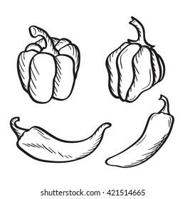 Artistic hand drawn sketches of hot chili, habanero and jalapeno peppers and paprika.