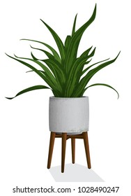 Artistic rendering of a spiky houseplant in a contemporary concrete planter isolated with wooden plant stand.