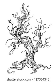 Artistically drawn old tree outline on white background.