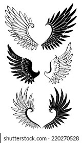Artistically painted black and white wings for tattoo.