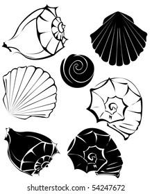 artistically painted, stylized seashells on a white background.