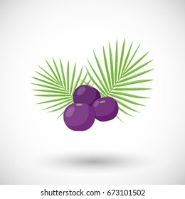 Asai berries vector flat icon, Flat design of superfood or healthy eating object with round shadow isolated on the white background, cute vector illustration with reflections