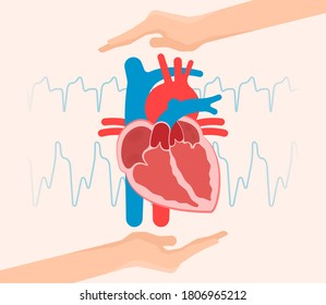 ASD VSD AFib exam hole leak pain TAVI TAVR based birth chest sinus treat angina damage Device murmur primum stroke repair septum ostium occlude surgery replace failure venosis venosus  problem