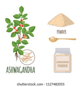 Ashwagandha set with powder and roots in flat style isolated on white background. Organic healthy food. Medicinal herbs collection. Ayurvedic plant. Vector illustration.