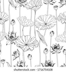 Asian garden. Hand drawn seamless pattern with  lotus flower