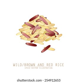Asian traditional food of Japan, Korea and China. Vector illustration of red and wild or brown rice mix.