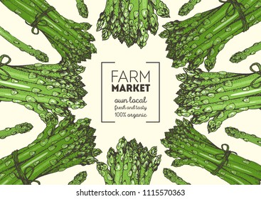 Asparagus vector illustration. Vegetable design template. Organic food illustration. Healthy food frame. Hand drawn asparagus.