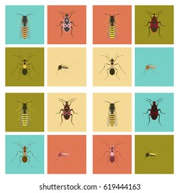 assembly flat Illustrations insect wasp soldier bug ant mosquito