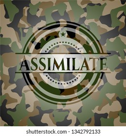 Assimilate on camo texture