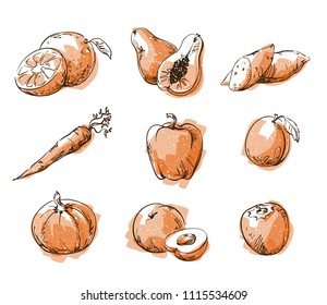 Assortment of orange foods, fruit and vegtables, vector sketch