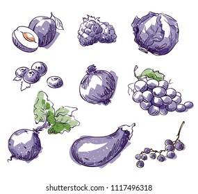 Assortment of purple foods, fruit and vegtables, vector sketch