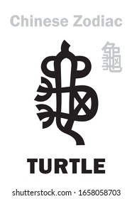 """Astrology Alphabet: TURTLE / TORTOISE [龜] sign of Chinese Zodiac. Also: Black Tortoise (""""The Dark Warrior""""), One of four Legendary intelligent beasts, Guardian of The North, supporting of The Earth."""