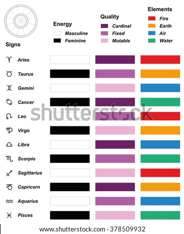Astrology Overview Chart Astrological Signs Zodiac Stock Vector