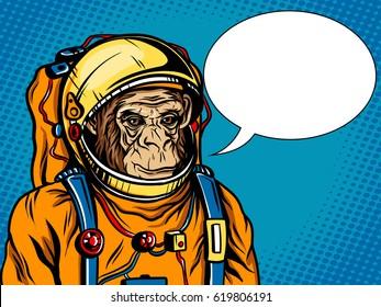 Astronaut monkey in space suit retro vector illustration. Comic book style imitation.
